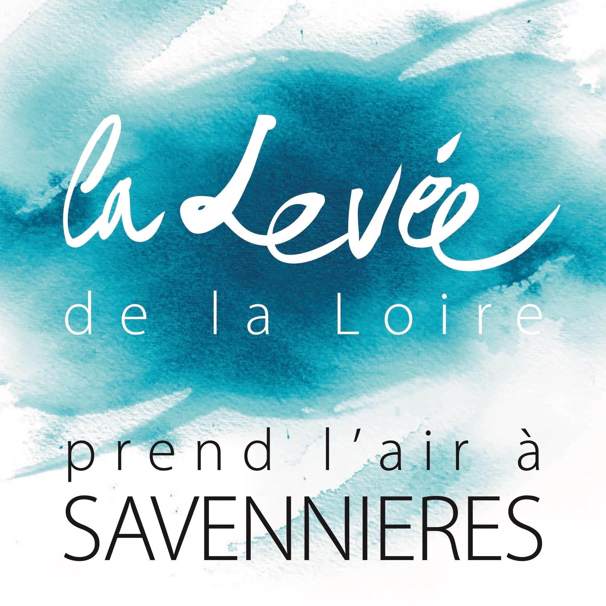 affiche de l'évènement de la levée de la Loire